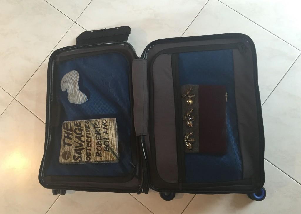 Bluesmart Luggage Opened