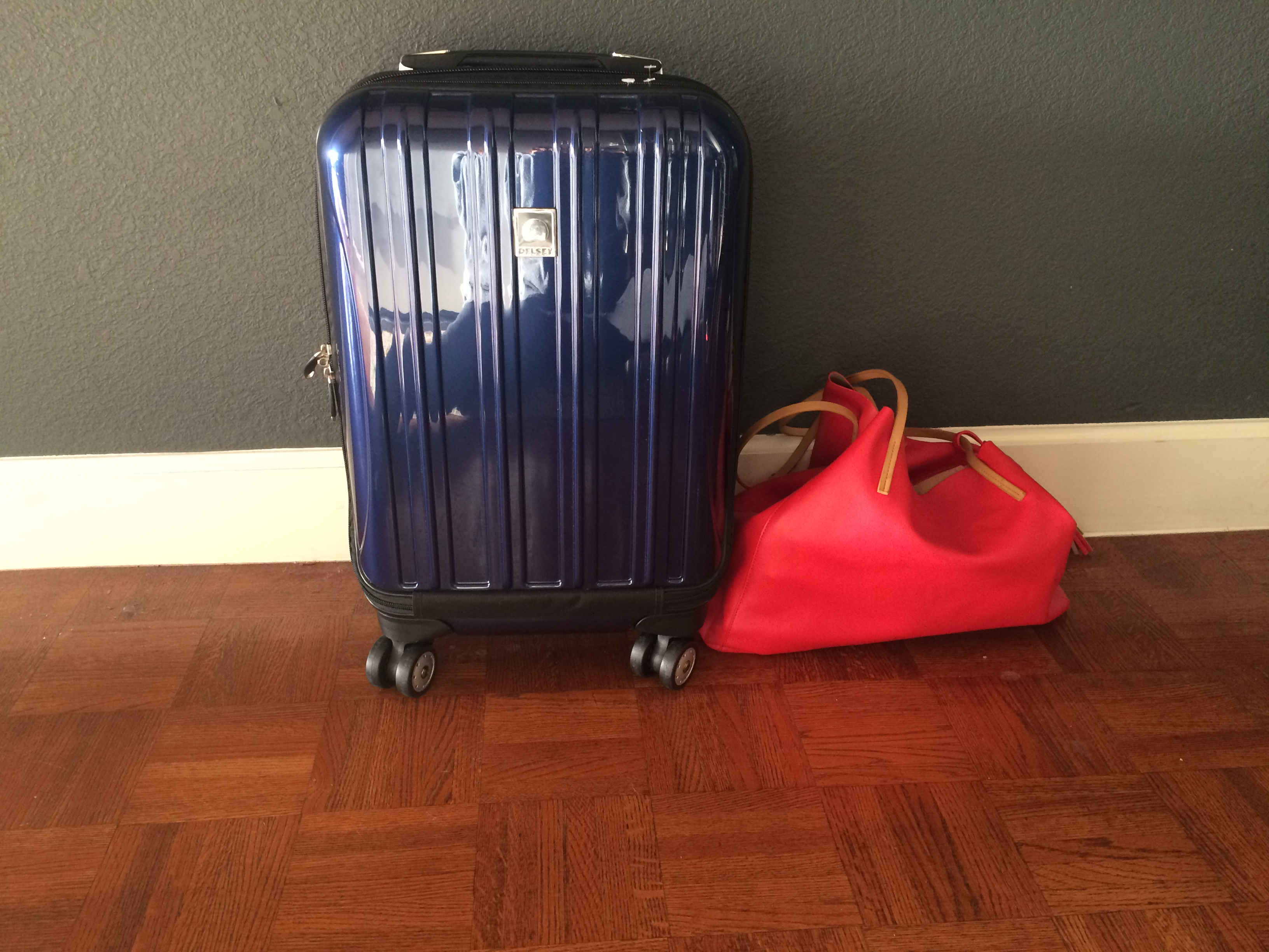 cd74f2ea29 Delsey Carry On Luggage Review: A Comprehensive Look At Its Pros and ...