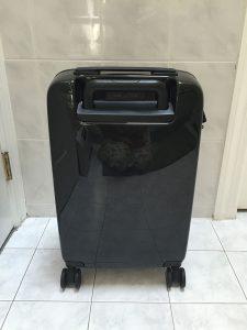 Raden Suitcase Back